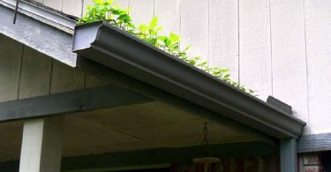 Photo of gutters that need to be cleaned