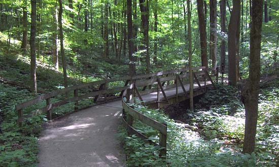 Photo of a Hiking Trail in Louisville