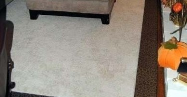 Photo of a rug with snazzy animal print border