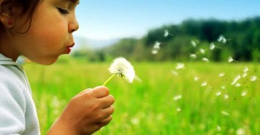 Photo of child blowing out dandelion