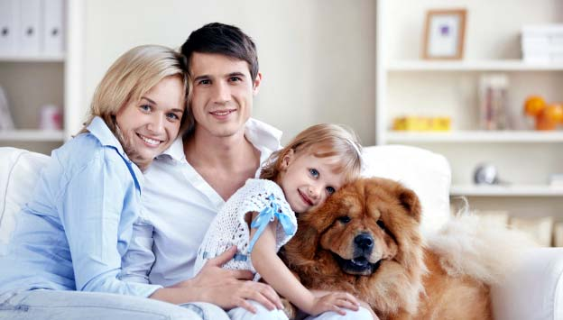 Photo of a family with a dog - Important Tips for Home Safety